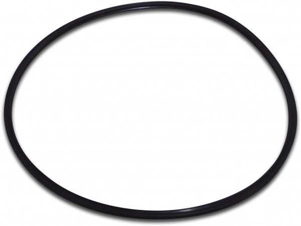"""O-Ring for 1,5"""" valve from FSP filter"""