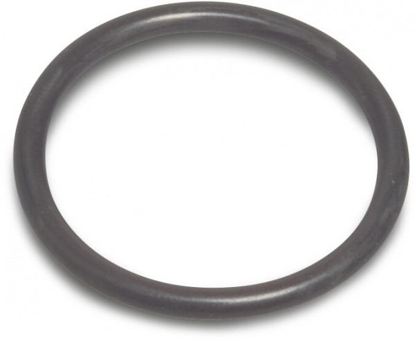 O-ring for Pre-filter 98 x 6 Optima (3)