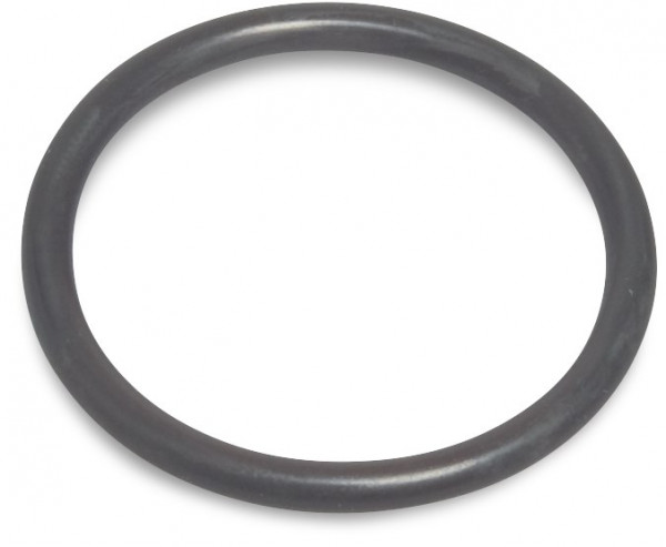 O-ring for lid