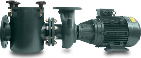 PSH Commercial pool pump, type FDN3000
